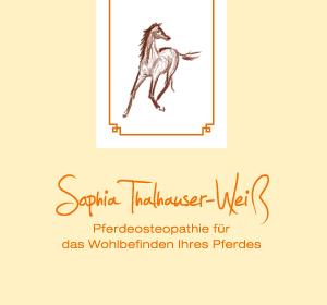 <span>Sophia Thalhauser-Weiß</span><i>→</i>